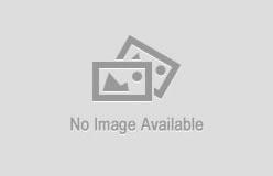 Stardew Valley 2 love bug Torrent Download